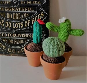 mini crochet cactus, the crochet craft co